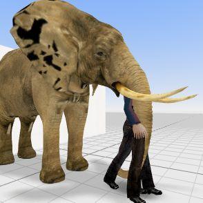 ELEPHANT HOUSE  Interior Design Render